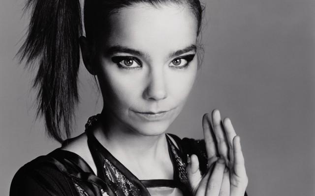 Björk 1