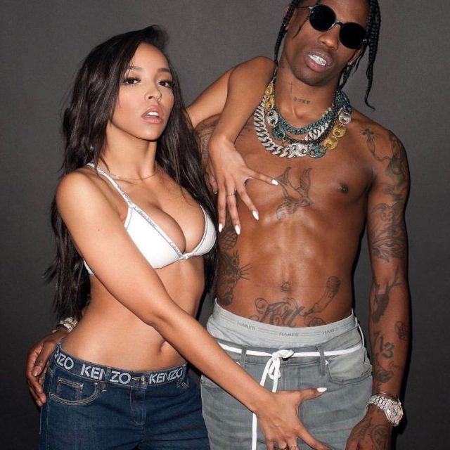 tinashe-travis-scott-dick-e1494333454609-850x850