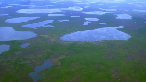 el-deshielo-del-permafrost-la-silenciosa-amenaza-climatica