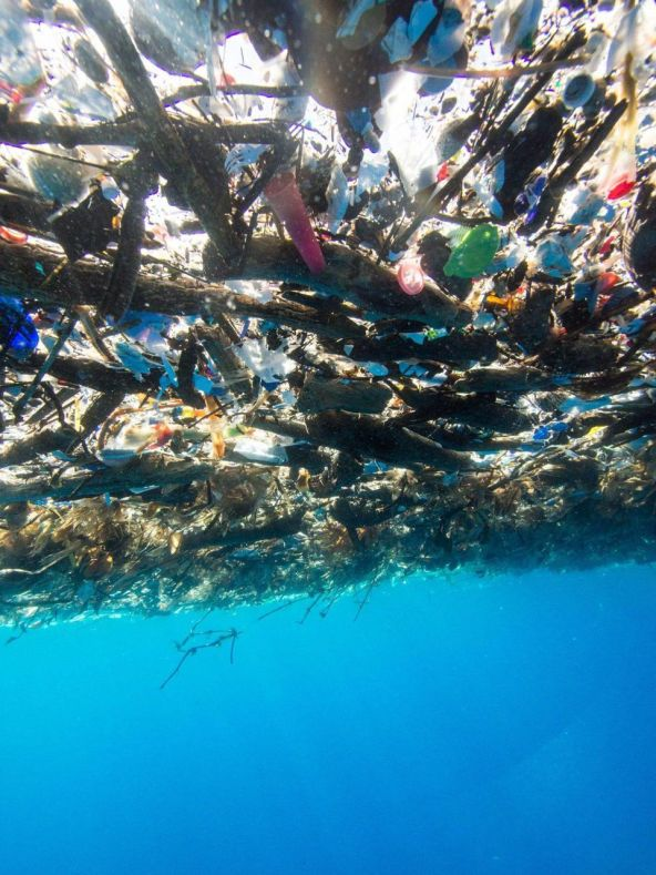 https3a2f2fblogs-images-forbes-com2ftrevornace2ffiles2f20172f102focean-underwater-trash-1200x1601