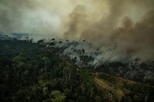 los-incendios-de-la-zona-tropical-no-generan-grandes-llamaradas-como-si-ocurre-en-muchos-incendios-en-espana_dbb9ef2f_960x640